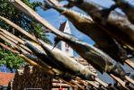 ff-luetzelburg-waldfest-2018--elmar.pics-0489